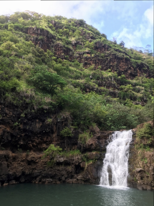 Waimea-Valley-02